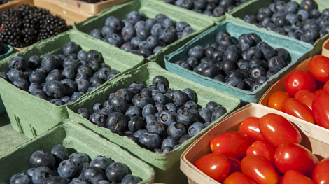 Blueberries, Blackberries, Cherry Tomatos